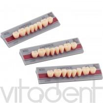 """Нейпес (Naperce, """"Yamahachi Dental"""") зубы акриловые двухслойные, жевательные, планка: 8шт."""